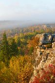 stock photo of virginia  - Autumn morning of West Virginia mountains from Bear Rocks in Dolly Sods Wildness area - JPG