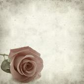 stock photo of pale  - textured old paper background with pale pink rose - JPG