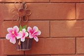 foto of hibiscus flower  - still life flowers Pink Hibiscus flowers in a basket and wall surface - JPG