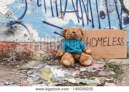 Teddy bear left on the ground near sign of homeless kid