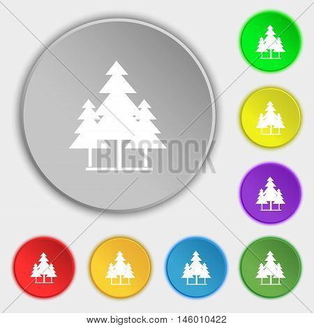 Christmas Tree Icon Sign. Symbol On Eight Flat Buttons. Vector