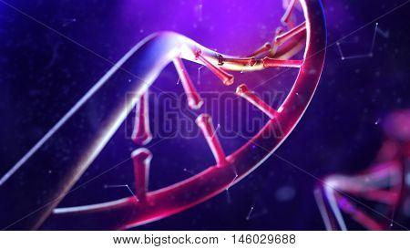 3d illustration of DNA molecule. Closeup of concept human genome.