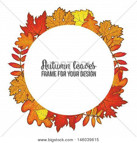 Round frame with fall leaves, sketch style vector illustration isolated on white background. Red, yellow and orange maple, aspen, oak and rowan autumn leaves as a round frame