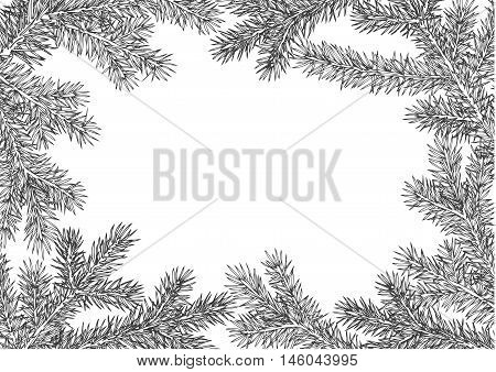 background made of fir branches. Black lush branch of spruce with the two sides.
