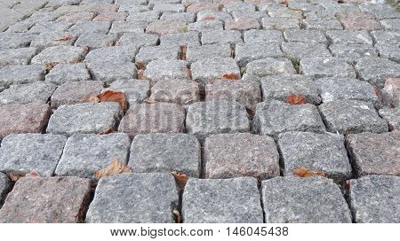 Walkway cobblestone, granite cubes, crushed with leaves and moss parties