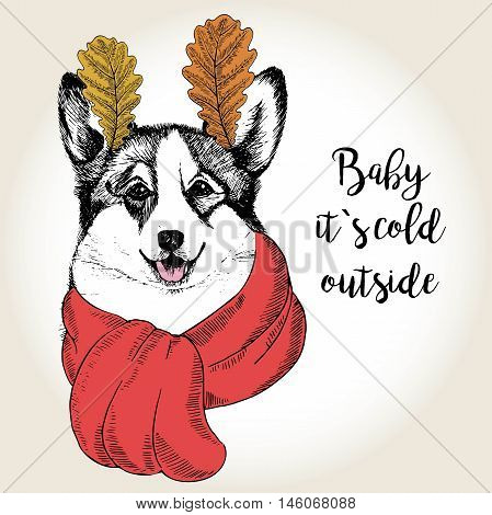 Vector close up portrait of welsh corgi wearing the red scarf and oak leaf ears. Hand drawn domestic dog illustration. Baby it s cold outside. Autumn engraved funny illustration.