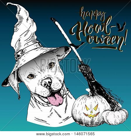 Vector greeting card for Halloween.English pittbull dog wearing the witch hat. Broom and pumpkin lanterns. Decorated with lettering Happy Howl-oween and bats. Hand drawn.