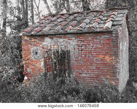 Haunted horror house. Old haunted house in the woods with evil spirits