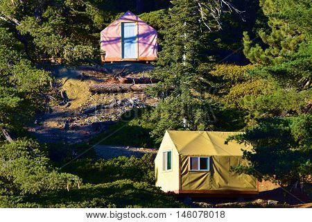 Modern style tent cabins surrounded by a Pine Forest taken in Mt Baldy, CA