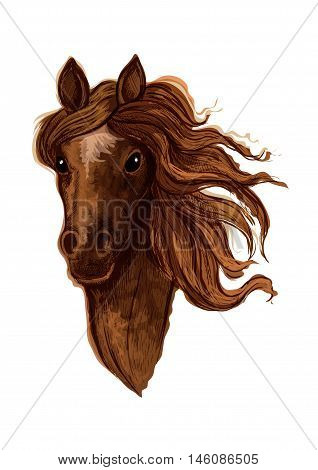 Sketch of brown arabian mare horse head with beige star mark in the middle of a forehead. Equestrian sporting competition, horse racing or t-shirt print design