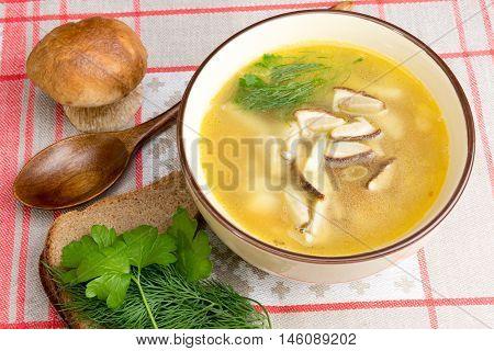 Mushroom Soup With Fresh Porcini
