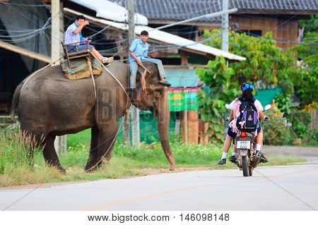 CHIANG MAI,THAILAND - November 13, 2015:Elephants and mahouts, while escorting tourists riding elephants to cross the road in  Mae Wang, Chiang Mai.
