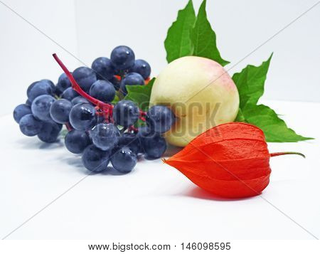 Colorful still life with apple, concord black grapes and physalis flower on white background
