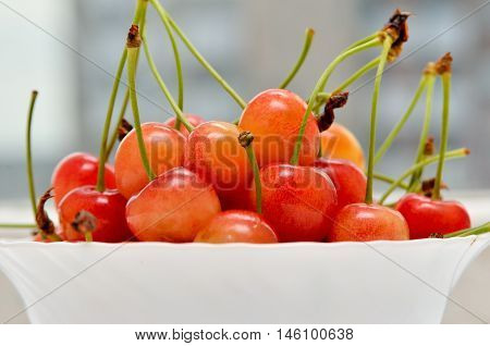 Ripe cherries in a white plate on a white background. Porcelain bowl filled with fruit still life.