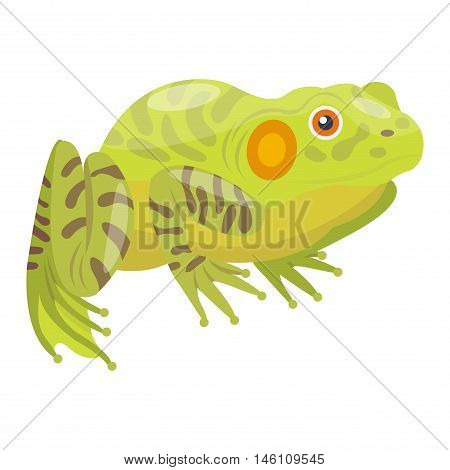 Frog cartoon tropical animal cartoon nature icon. Funny frog cartoon vector illustration. Some frog flat syle isolated on white background