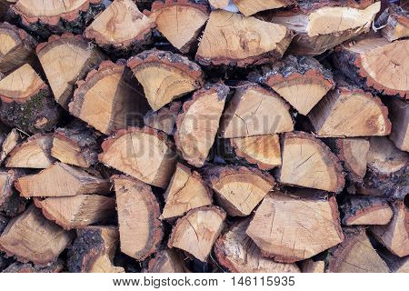 Dry wooden logs placed in cord natural background