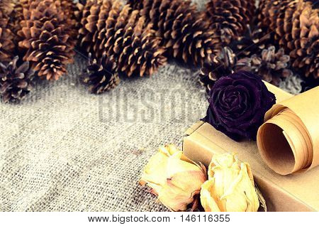 Natural Items Collection For Handcraft (paper, Pine And Spruce Cones, Cardboard Box, Dried Flowers)