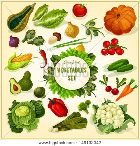 Healthy organic vegetables and herbs icon with tomato, olive, onion, corn, cucumber, carrot, pepper, pumpkin, cabbage, avocado broccoli leek mushroom cauliflower lettuce artichoke basil