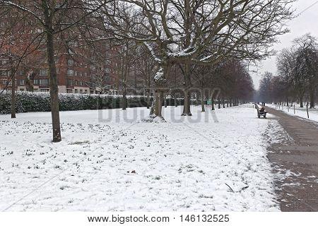 LONDON UNITED KINGDOM - JANUARY 18: Snow in Hyde Park in London on JANUARY 18 2013. Cold Winter With Snow in London United Kingdom.