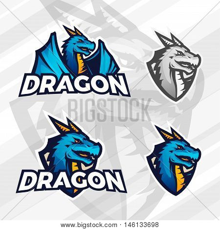 Creative dragon logo concept. Sport mascot design. College league insignia, Asian beast sign, Dragons illustration, School football team vector.