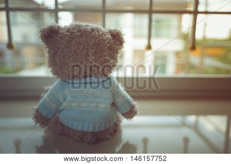 Lonely Teddy bear, Sadly, Sad, Doll, in home