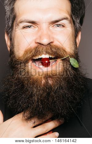 handsome sexy bearded young man hipster with long beard and mustache has stylish hair on emotional hairy face sunny day outdoor holding red cherry in mouth closeup