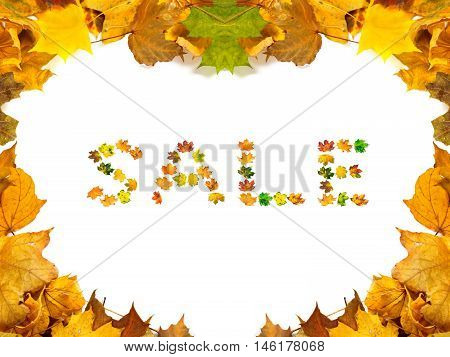 Autumn Maple-leafs Background With Word Sale Composed Of Autumnal Maple Leafs