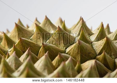 abstract closeup thorn of durian fruit over white