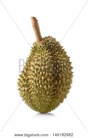 Mon Thong durian fruit isolated on white background