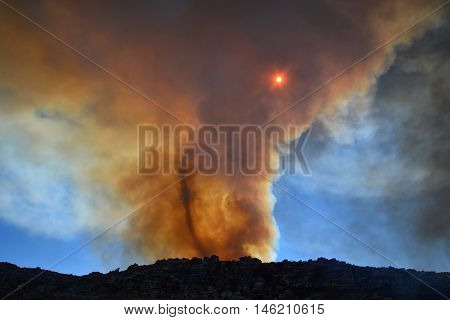 A fire vortex swirls the smoke clouds over a fynbos wildfire