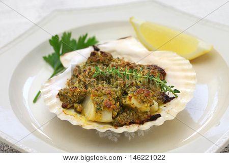 capesante gratinate, baked scallop gratin, italian cuisine