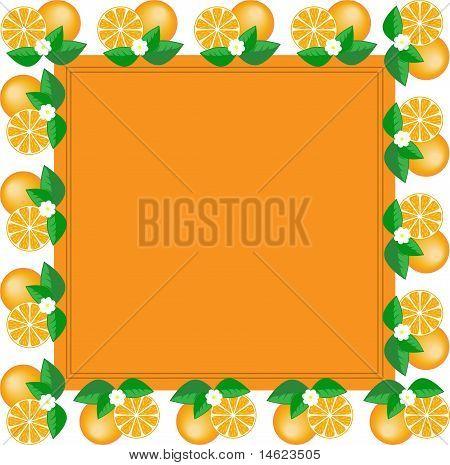 Frame Of Oranges