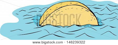 Floating Taco In Blue Water