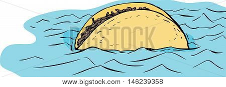 Floating Beef Taco In Water