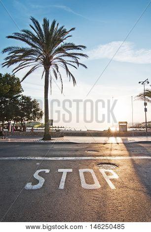 Backlit Stop Sign