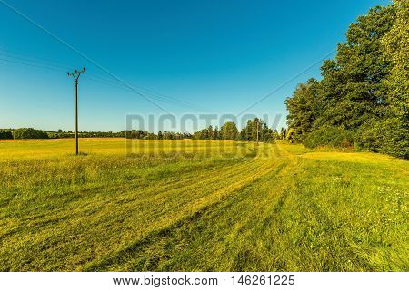 Track On The Meadow Next To Electric Pillars