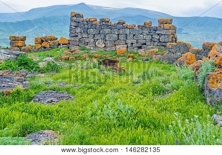 The wall of megalithic fortress among the green grass in Saro Georgia.