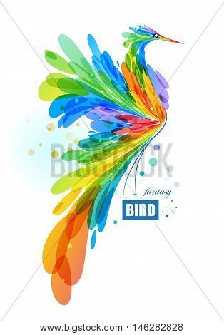Abstract fantasy colorful bird on white background