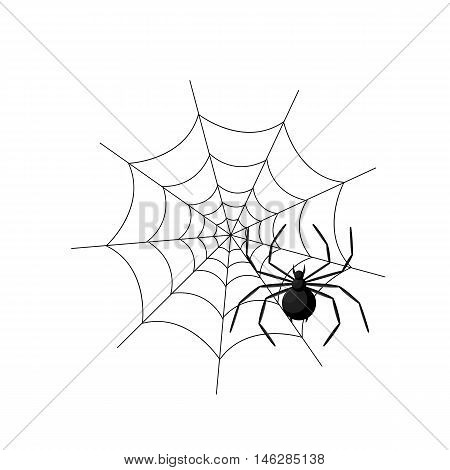 Spider In The Web Isolated On White Background