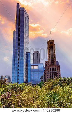 A little bit of Chicago. A skyline with artistic flare.