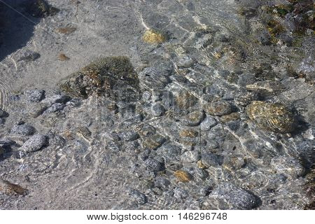 This is an image of a tide pool taken at low tide in the Asilomar State Preserve in Pacific Grove, California.