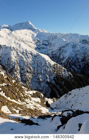 Mt Rolleston Viewed from Scotts Track on Avalanche Peak  Arthurs Pass, Southern Alps, Canterbury, New Zealand