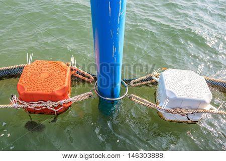 Close up orange and white sea buoys floating on sea.