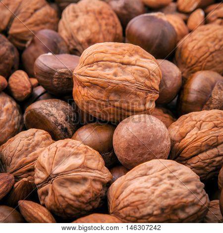 Different Kinds Of Nuts In Shells ,cashew, Almond, Walnut, Hazelnut, Pistachio, Hazelnuts, Pecan And