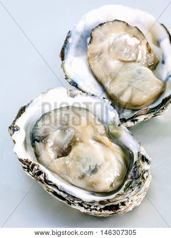 Fresh Oysters For  Appetizer . Opened Fresh Oysters With Selective Focus On The Tray .