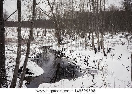 Winding forest river in the early spring on a background of snow