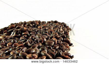 Coffee Grains Frame