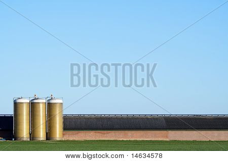 Large Cowshed