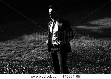 Elegant Man Poses On Landscape