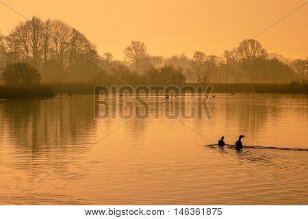 Reflecting Orange Morning Sun In Lake With Birds